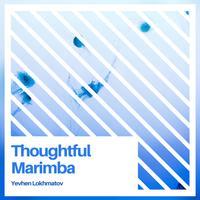 Yevhen Lokhmatov - Thoughtful Marimba