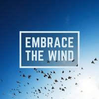 WinnieTheMoog - Embrace the Wind