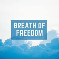 WinnieTheMoog - Breath of Freedom
