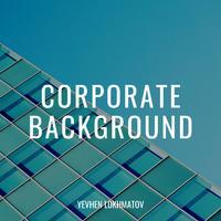 Yevhen Lokhmatov - Corporate Background