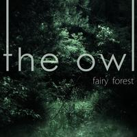 The Owl - Rainy Sun