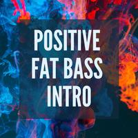WinnieTheMoog - Positive Fat Bass Intro