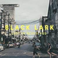 Black Lark - Young Hero