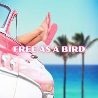 Composer Squad - Free As A Bird