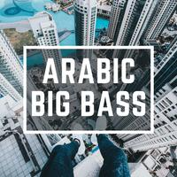WinnieTheMoog - Arabic Big Bass